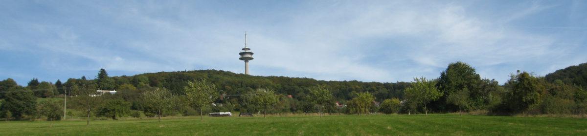 Spielvereinigung Dart im Denkmal Rossert e.V.